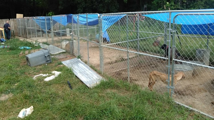 Rose City puppy mill