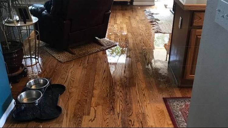 wet floor_cropped_1535055886717.png.jpg