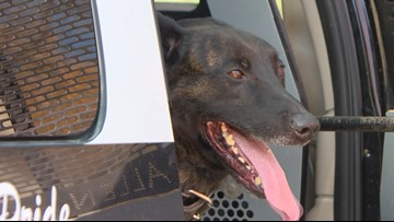Why legal pot is forcing some drug dogs into retirement