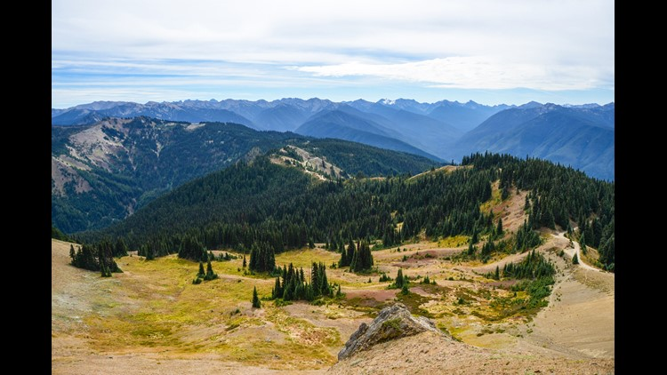 Overlooking Hurricane Hill at Washington's Olympic National Park. (Photo by Darren Murph / The Points Guy)