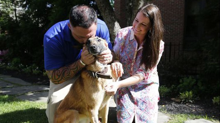 American Humane's Amy McCullough said that the organization is happy to reunite the two.