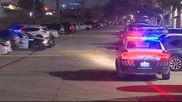 Dallas pizza driver shoots, kills robber: police source