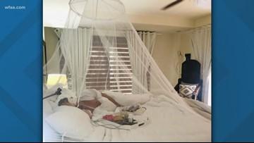 Dallas attorney bit by mosquito in Mexico, diagnosed with dengue