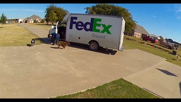 WATCH: FedEx driver hits 13-year-old dog while dropping off package, then drives away
