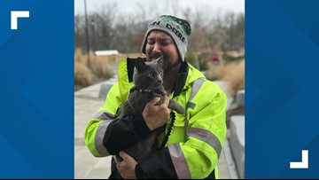 Man reunited with cat he lost at Ohio truck stop back in July
