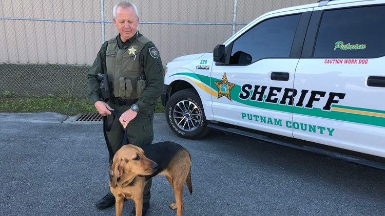 Florida passes bill allowing police K9s to be taken in ambulance