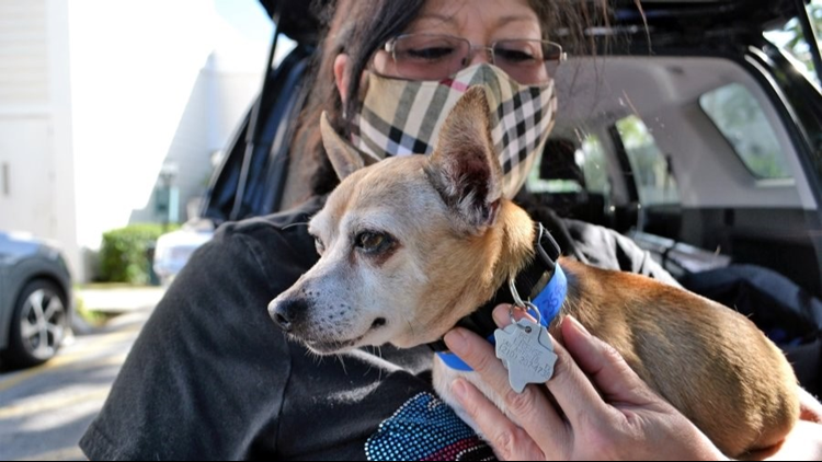 Texas family drives more than 1,300 miles to reunite with their missing dog after 6 years