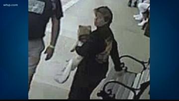 Two women arrested after Vietnam veteran's service dog is stolen on camera