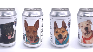 Brewery puts shelter dogs on beer cans to find them forever homes