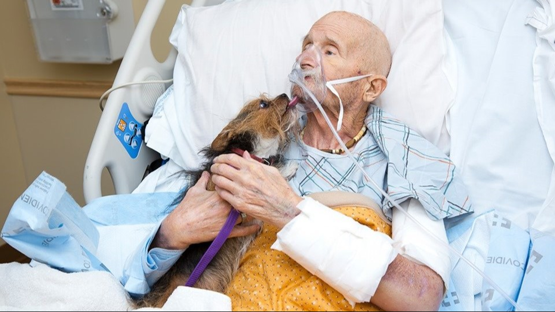 Vietnam veteran in hospice care reunites with his dog for final time
