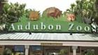 UPDATE: Third fox dies after Audubon Zoo jaguar escape