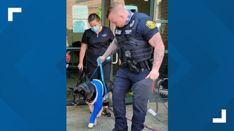 Georgia K9 officer released from hospital after being shot during chase, will now live 'life of luxury'
